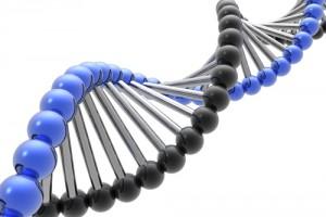 xet nghiem ADN gen di truyen