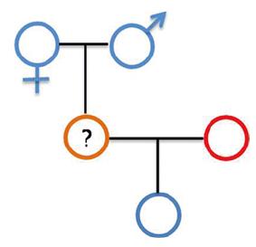 xet nghiem ADN ca hai ong ba