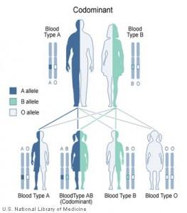 xet nghiem ADN va nhom mau